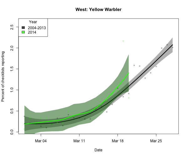 But the beginnings of the Yellow Warbler influx appears to be right on schedule.