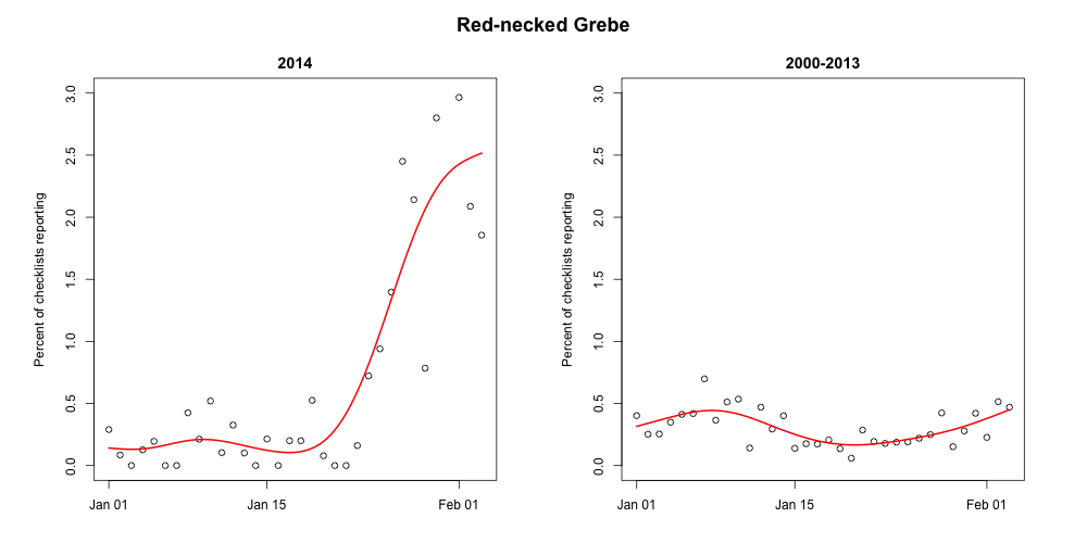 Red-necked Grebes have been reported on a relatively small number of checklists in the month of January 2000-2013. But January 2014 shows a drastic departure from this pattern. From MD, PA, DE, NY, and NJ.